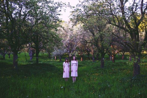 Deep Orchard
